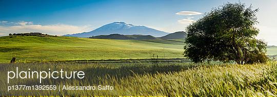 p1377m1392559 von Alessandro Saffo