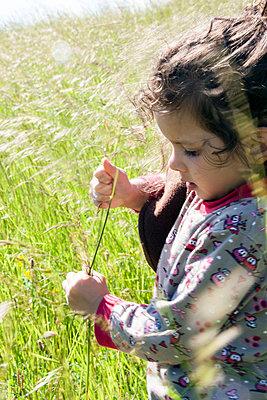 Gras pfückendes Mädchen - p754m1590112 von Valea Diller-El Khazrajy