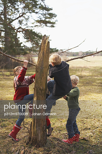 Children climbing tree - p312m970008f by Johan Ödmann