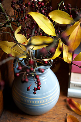 Autumn leaves and berry arrangement in Isle of Wight home;  UK - p349m920026 by Rachel Whiting
