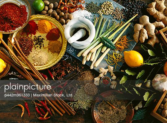 Agriculture - Spices/condiments: red chili pepper, curry, lemon, lime, ginger, cumin, Juniper berries, lemon grass, orange peel, garlic, white and black pepper, cardamom, bay leaf, dried ginger, cinnamon, salt, mustard, star anise, nutmeg, mace, paprika - p442m961333 by Maximilian Stock, Ltd.