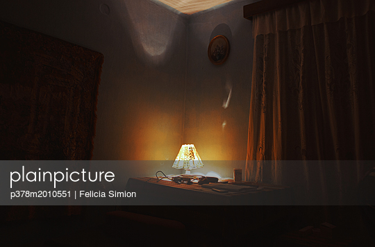 p378m2010551 von Felicia Simion