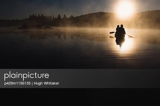 p429m1156135 von Hugh Whitaker