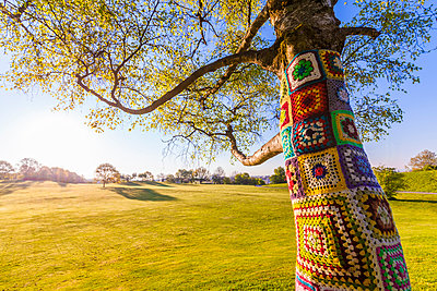 Tree trunk covered with crochet - p300m1153518 by Werner Dieterich