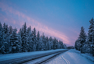 Remote winter road through snow covered forest trees, Lapland, Finland - p1023m1448867 by Anna Wiewiora