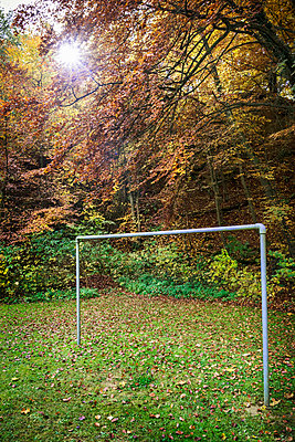 Soccer field - p1132m1094342 by Mischa Keijser