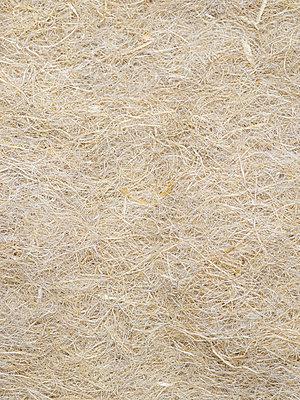 Hemp fibres - p401m2187133 by Frank Baquet