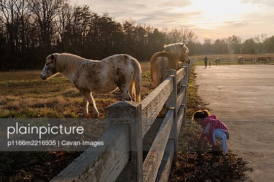 p1166m2216935 von Cavan Images