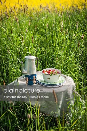 Picknick mit frischen Erdbeeren - p1288m1161435 von Nicole Franke