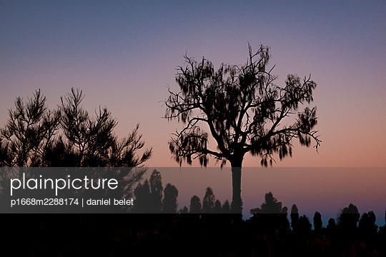 Evening mood - p1668m2288174 by daniel belet