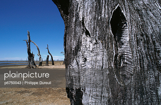 p6750043 von Philippe  Dureuil