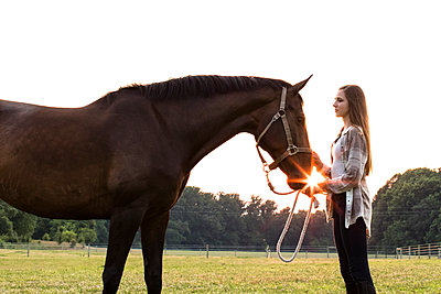 Teenage Girl With Brown Horse in Field at Sunset, With Sun Flare - p1166m2078241 by Cavan Images