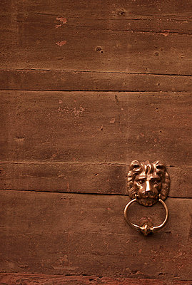 Door knob lion - p7170046 by Oliver Rüther
