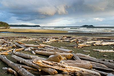 FlorenciaÊBay, Pacific Rim Park,ÊTofino, British Columbia, Canada - p343m2047025 by Ben Girardi
