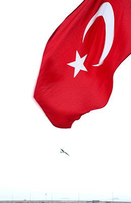 Turkish flag and seagull - p382m1091324 by Anna Matzen