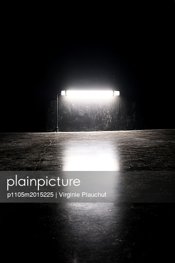 p1105m2015225 von Virginie Plauchut