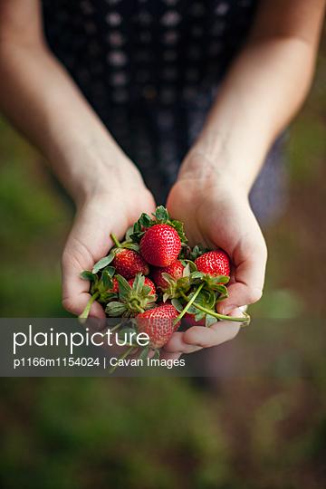 p1166m1154024 von Cavan Images