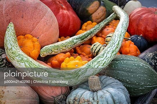 Pumpkins at market stall - p300m2140290 by Christina Falkenberg