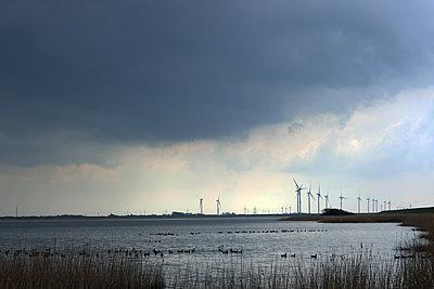 Windpark an der Küste, Schleswig-Holstein - p1016m2289464 von Jochen Knobloch