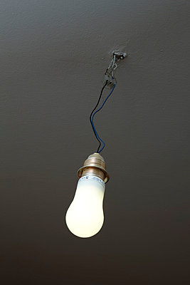 Single light bulb - p3640195 by T. Hoenig