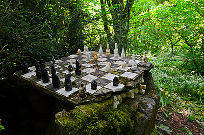 Old Chessboard in Woodland - p1562m2187021 by chinch gryniewicz