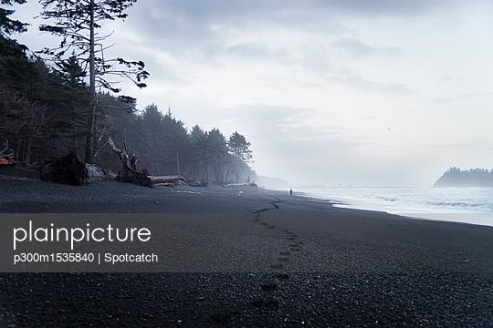 p300m1535840 von Spotcatch