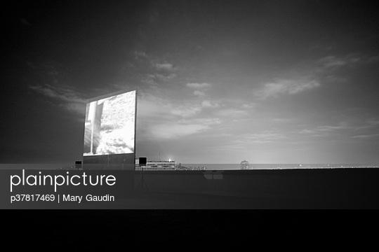 p37817469 von Mary Gaudin