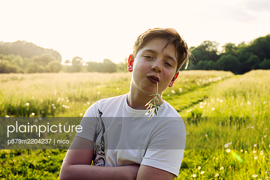 Boy with arms crossed in a meadow - p879m2204237 by nico