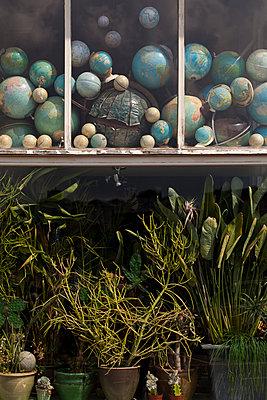 Die ganze Welt - p1340m2002091 von Christoph Lodewick