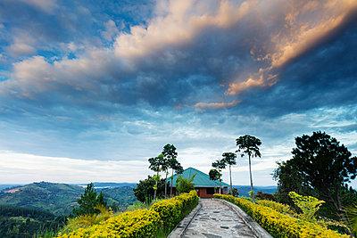 Top of the World resort, Uganda, Africa - p871m1498203 by Christian Kober