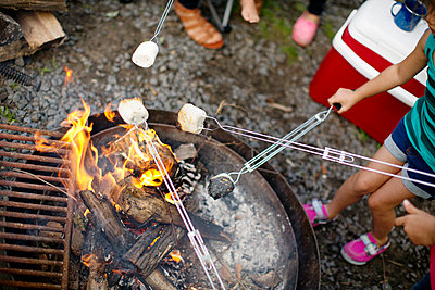 High angle view of kids roasting marshmallows - p1166m1097342f by Cavan Images