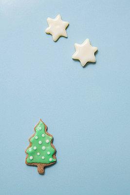 Christmas star - p4540470 by Lubitz + Dorner