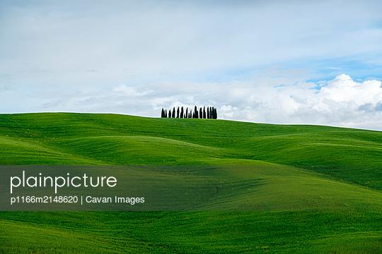 p1166m2148620 von Cavan Images