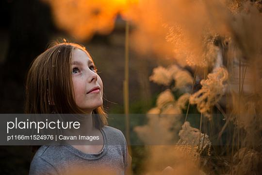 p1166m1524976 von Cavan Images