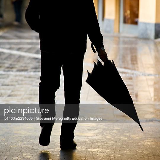 Rain - p1403m2294663 by Giovanni Mereghetti/Education Images