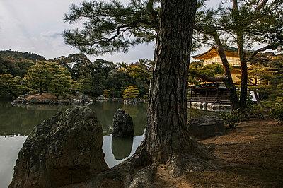 Goldener Tempel in Kyōto - p1093m904082 von Sven Hagolani
