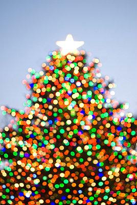 Christmas Tree - p5690111 by Jeff Spielman
