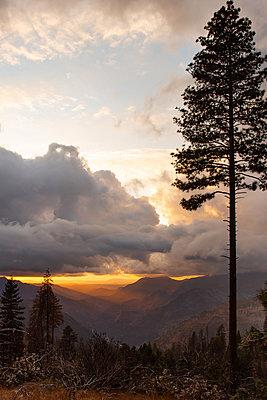 Sonnenaufgang, Yosemite-Nationalpark, Kalifornien - p756m2253147 von Bénédicte Lassalle