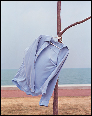 Blue shirt on hanger, hanging from tree branch - p3720301 by James Godman