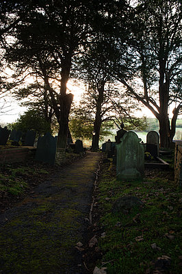 Footpath through an old graveyard in early morning light - p1047m1131867 by Sally Mundy