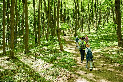 Kids on a field trip in forest - p300m1587284 von Zeljko Dangubic