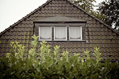 Dach eines Einfamilienhauses zwischen Bäumen - p586m972987 von Kniel Synnatzschke