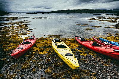 Stony beach seascape coast seaweed nobody canoes ocean - p609m2066439 by WALSH photography
