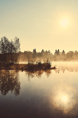Lake and forest - p1312m2275832 by Axel Killian
