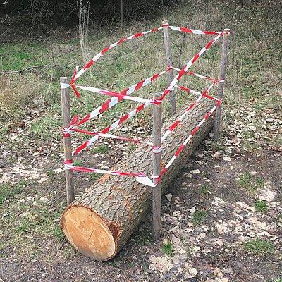 Absperrung mit Holzstamm - p1401m2159050 von Jens Goldbeck