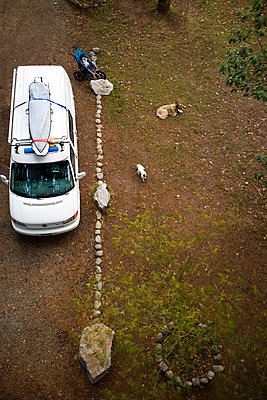 Aerial view of a van taken from a bridge in the tree canopy - p1424m1501784 by Woods Wheatcroft