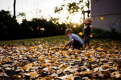 Happy brothers playing with maple leaves in backyard during autumn - p1166m1185986 by Cavan Images