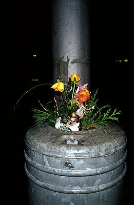 Blumen in den Müll - p1130007 von Lioba Schneider