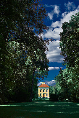 English Grounds of Wörlitz with old building - p227m1191138 by Uwe Nölke