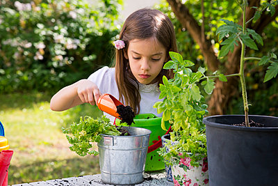 Portrait of little girl potting parsley on table in the garden - p300m2005527 von Larissa Veronesi